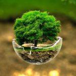 Tributação de forma a incentivar a preservação do meio ambiente