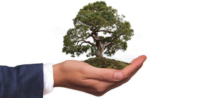 STF: Há direito de crédito de PIS/Cofins na aquisição de insumos recicláveis